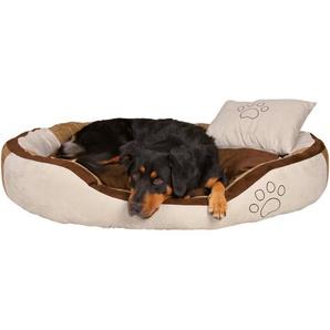 Jollypaw Bett Jordy 60 cm × 50 cm Beige/ Braun