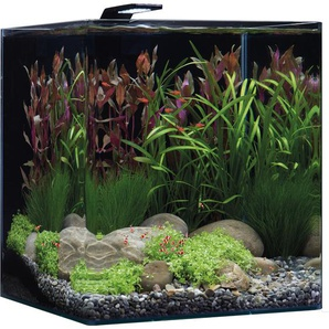 Dennerle Mini-Aquarium Nano Cube® Basic 60 l