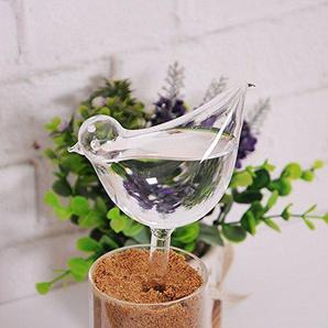 Blesiya Wasserspender Bewässerungskugeln Glas Vögel Pflanzenbewässerung Pflanzen