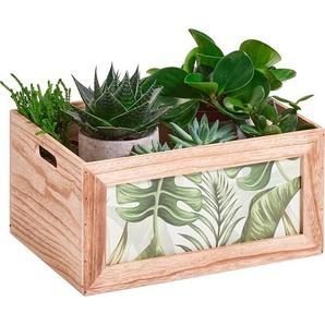 Zeller Aufbewahrungs-Kiste Jungle Holz