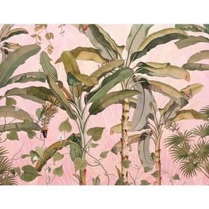 Vlies Fototapete Plantation 3.5 m x 270 cm