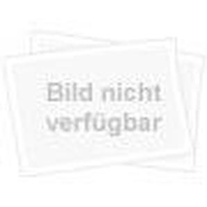 Trotec Sichtschutzwand 4*180*180 Weiß/Blau