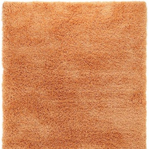 Hochflorteppich Sophie Orange 160x230 cm