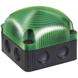 WERMA LED-Dauerleuchte 12V DC grün