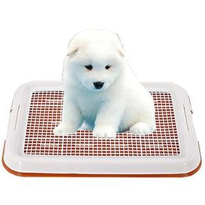 GreeSuit- Welpentoilette Dog Potty Training WC Welpentoilette Puppy Ineinander greifen-Auflage-Halter-Toiletten-Behälter (Orange)
