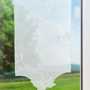 Scheibengardine aus Plauener Spitze Ahornblatt (Bx H) 40cm * 138cm weiß/terra