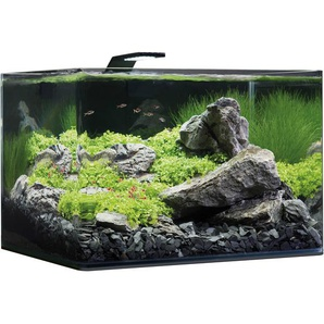Dennerle Panorama-Aquarium Nano Scapers Basic 55 l