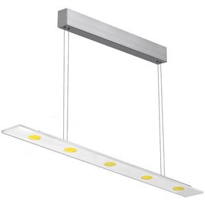 EVOTEC LED Pendelleuchte »SUN LED«, 5-flammig