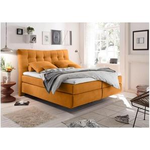 JUSTyou Juneau Boxspringbett Continentalbett Amerikanisches Bett Doppelbett Ehebett Gästebett 180x200 Orange