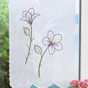 Scheibengardine aus Plauener Spitze Blume (Bx H) 49cm * 70cm weiß