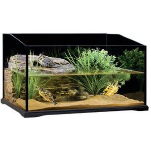 Exo Terra PT3750 Turtle Terrarium 60 x 45 x 35 cm