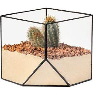 Ultra 15x15x15cm Square Clear Glass Terrarium Planter Geometrische Form For Display Wedding Tabletops Einzigartiges Zentrebenstück Oder Windows-Shasen für Luftanlagen Fern Moss Kleine Sukkulenten in den Garten
