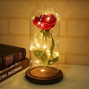 MarCooITrip MZ Rose Blume Lampe ewige Blumen LED Nachtlicht Hochzeit rote Seidenblumen in Glaskuppel auf Holzsockel Dekoration Jubiläum Party Dekor