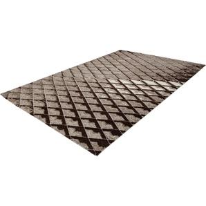 Teppich Polset 553 calo-deluxe rechteckig Höhe 13 mm maschinell gewebt