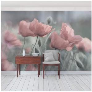 Bilderwelten Vliestapete Premium Quer »Malerische Mohnblumen«
