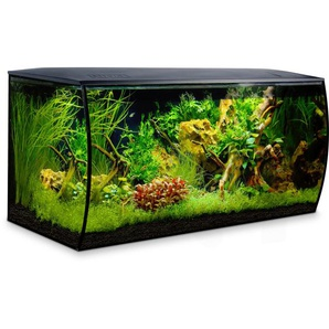 Fluval Aquarium-Set Flex 123 l Schwarz