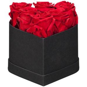 Rosenbox Longlife-Rosen 6 Stück Rot herzförmige Schachtel Schwarz 12 cm x 9 cm