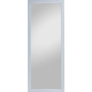 Rahmenspiegel KATHI Rahmen Silber ca. 66 x 166 cm