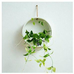Übertopf zum Aufhängen, Pflanzgefäß, für Innen- und Aßenbereich, Wandmontage möglich (Pflanze nicht enthalten)