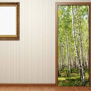 Türaufkleber Birkenwald Birke Wald Baum Landschaft Bäume Weg Tür Folie Bild Türposter Türfolie Türtapete Türbild selbstklebend bunt Druck Aufkleber sticker 15B020, Türgrösse:67cmx200cm