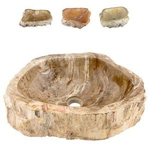Divero versteinertes Holz Waschschale Aufsatz-Waschbecken Handwaschbecken Fossil über 22 kg Innen Poliert Außen naturbelassen Helle Färbung mit Dunklen Akzenten