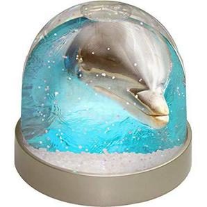 Advanta Dolphin Nahaufnahmen Schneekugel Snow Dome Geschenk, mehrfarbig, 9,2x 9,2x 8cm
