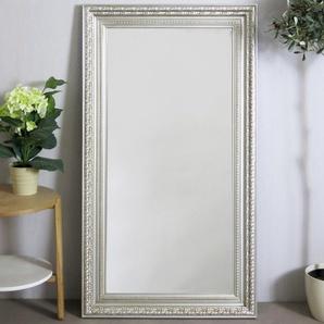My Flair Spiegel 72x132 mit Rahmen silberfarben 109061