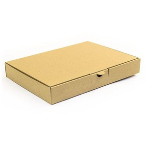 500 Warensendungen 305 x 220 x 44 Maxibriefkarton Post Maxibrief Karton BRAUN - KK VERPACKUNGEN