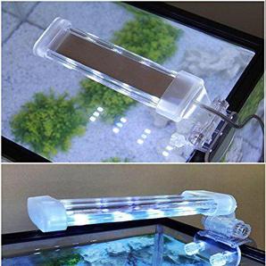 BPS® Aquariumlampe LED Beleuchtung Pflanzenlicht wasserdicht Licht Weiß und Blau 2 Modelle zur Auswahl 4 W/8 W