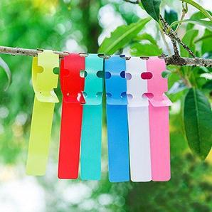 KINGLAKE 600 Stk 6 Farben Plastik Pflanzenstecker Pflanzschilder 2x20 cm Stecketiketten Wrap Um Etiketten Pflanzen Wetterfest ...