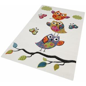 Kinderteppich »GUADAIRA«, merinos, rechteckig, Höhe 13 mm, Eulen, handgearbeiteter Konturenschnitt