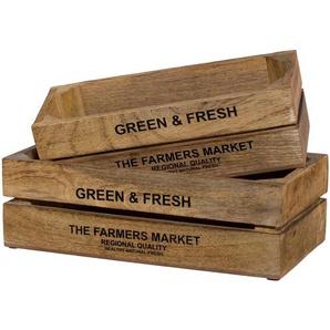 Kiste Green&Fresh (Set 2)