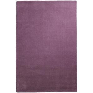 Hochflor-Teppich uni Farben, lila, Gr. 120/180 cm,  home, Material: Schurwolle
