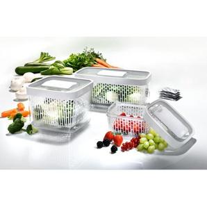 OXO Good Grips Frischhaltebox Greensaver Frischebox, Obst und Gemüse Frischedose, 4 Liter
