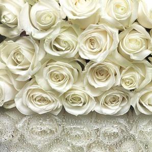 Fototapete »Sunny Decor A La Rose«, naturalistisch