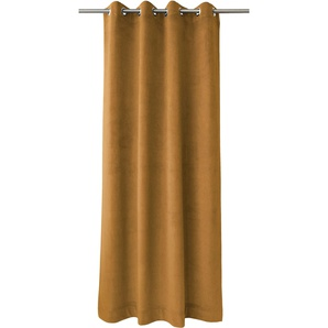 Apelt Vorhang  »TASSILO«, H/B 245/135 cm, braun
