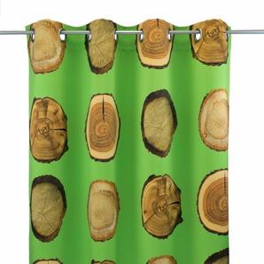 Vhg Vorhang »Holzscheibe Natur«, H/B 245/145 cm, grün