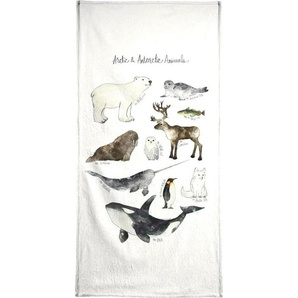 Arctic and Antarctic Animals - Handtuch