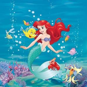 Fototapete »Ariel Singing«