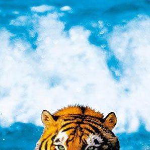 Türtapete »Bengal Tiger«
