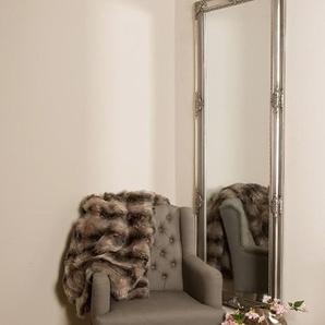My Flair Spiegel 65 x 190 cm mit Rahmen silberfarben 109054
