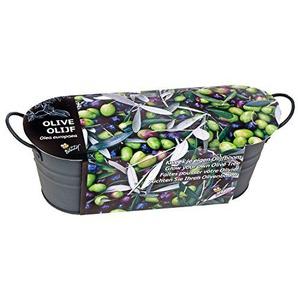 Olivenbaum Anzuchtsset in anthraziter Blechwanne