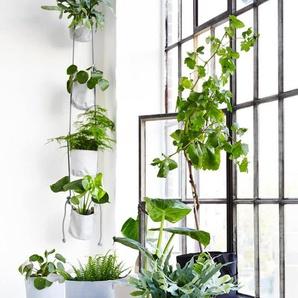 Vertical Flowerpots - die vertikaler Blumentöpfe