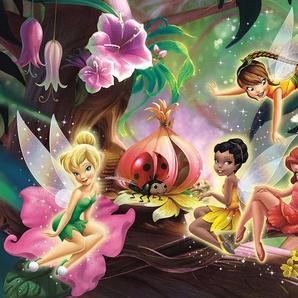 IDEALDECOR Fototapete »Disney Feen«
