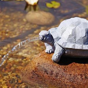 OASE Wasserspiel , Wasserspeier Schildkröte