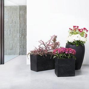Pflanzenkubel Asthetisch Und Dekorativ Moebel24