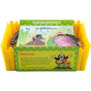 Mein Minigarten Der kleine Maulwurf - Schmollblume