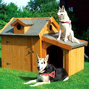 Hundehütte MAX ohne Anbau 110 x 108 x 112 cm Hundehaus Isoliert Wetterfest Hütte