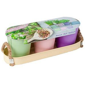 geschenkartikel-shopping 3 Zink-Eimer Zink-Tablett Pastell Kräuter-Set Kräutergarten Pflanzerde Samen