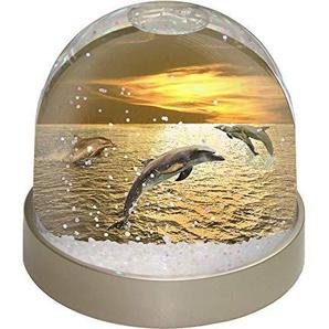 Advanta Gold Sea Sunset Delfine Snow Dome Globe Geschenk, mehrfarbig, 9,2x 9,2x 8cm